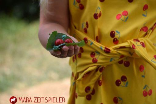 Schnittmuster Kleid Manja Zierstoff11