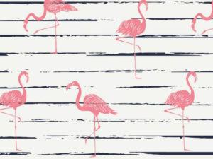 7956_002_Jersey Flamingo
